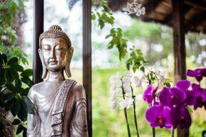 Buddha s květinou